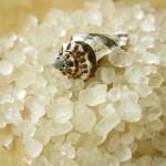 sól z Morza Martwego Dr nona