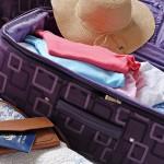 summer-luggage
